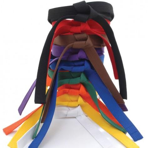 Tokaido Martial Arts Training Belt
