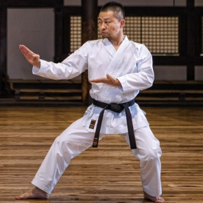 TOKAIDO LIGHTWEIGHT KUMITE GI - HAYATE NST 疾風